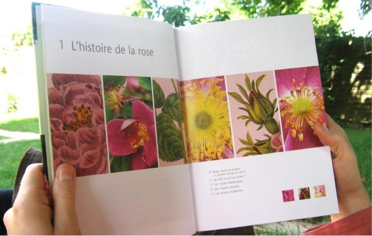 IMAGES pour blog5